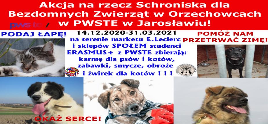 Charytatywna akcja na rzecz Schroniska dla Bezdomnych Zwierząt w Orzechowcach na terenie marketu E.Leclerc i sklepów SPOŁEM w Jarosławiu - 2020