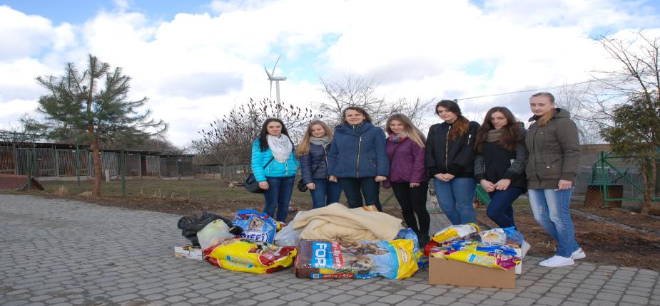 Akcja na rzecz Schroniska dla Bezdomnych Zwierząt w Orzechowcach