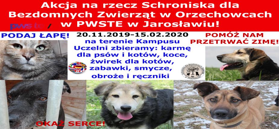 Charytatywna akcja na rzecz Schroniska dla Bezdomnych Zwierząt w Orzechowcach na terenie Kampusu PWSTE w Jarosławiu - 2019