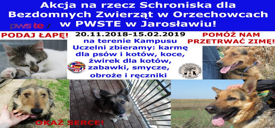 Charytatywna akcja na rzecz Schroniska dla Bezdomnych Zwierząt w Orzechowcach na terenie Kampusu PWSTE w Jarosławiu