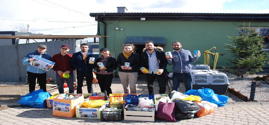 Finał akcji na rzecz bezdomnych zwierząt z Orzechowiec